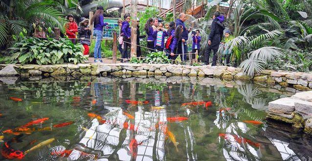 افضل الأنشطة في حديقة الحيوانات في أزمير تركيا | حديقه الحيوانات فى ازمير تركيا