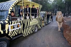 افضل الانشطه في حدائق حيوانات تركيا (7)