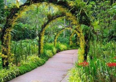 الحديقة النباتية