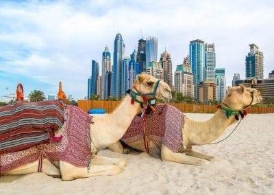 اهم المعالم السياحية في الامارات
