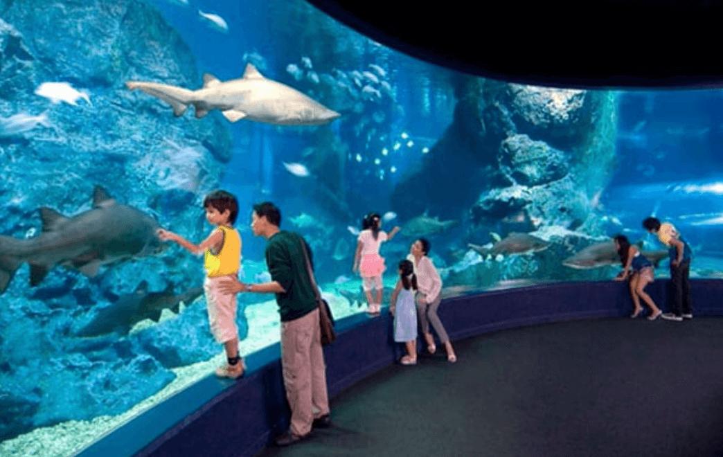 عالم المحيط في بانكوك تايلاند