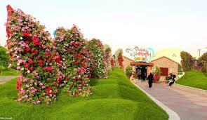 أنشطة في حديقة الخور دبي الامارات