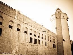 أنشطة في قصر الحصن أبوظبي الامارات