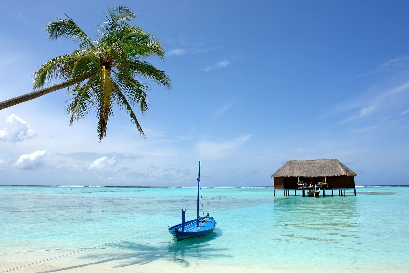 اهم الانشطة السياحية في جزر فرهنتين ماليزيا  | وجهه الاحلام فى ماليزيا
