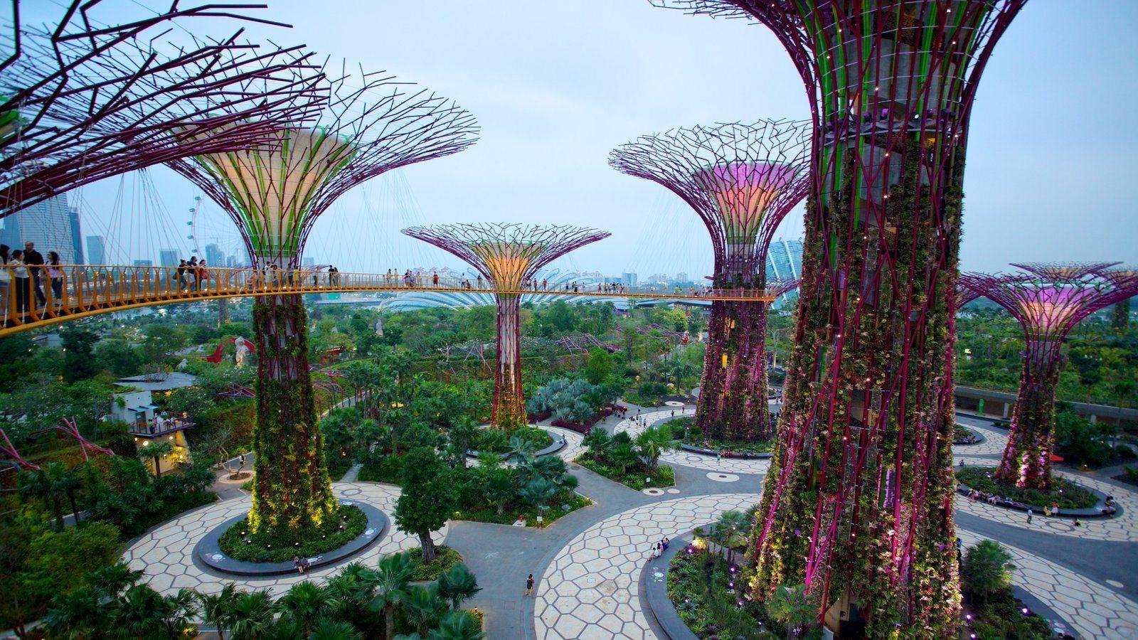 Singapur Körfez Bahçeleri'nde en iyi 10 aktiviteleri