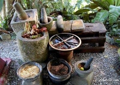 حديقة التوابل Tropical Spice Garden