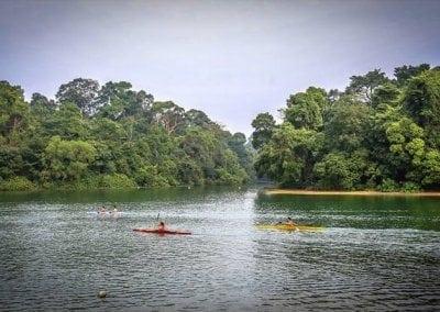المحميات الطبيعية فى سنغافورة