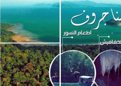 رحلة نهرية الى نهر المانغروف