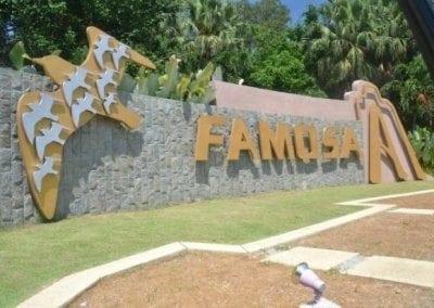 سفاري افاموسا Afamosa (14)