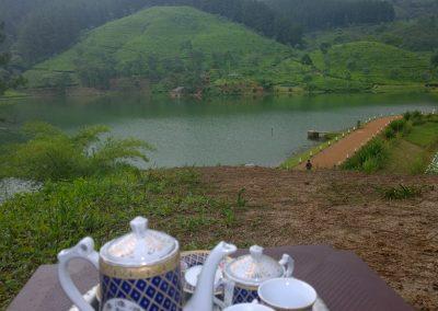 مصانع الشاي في كاندي