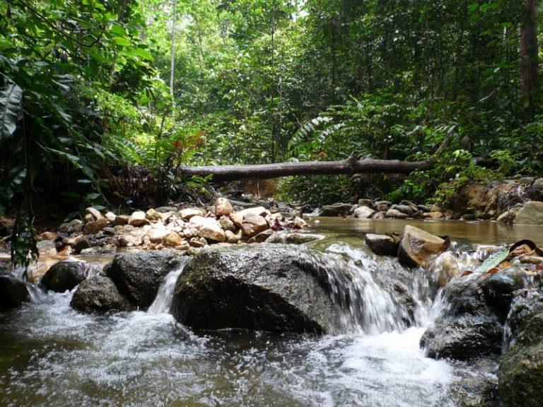 شلالات تمبلر بارك في سيلانجور ماليزيا