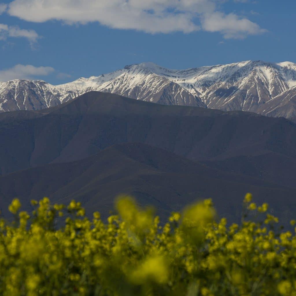 샤카이 아제르바이잔 관광