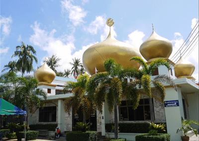 مسجد دينيا نيورت