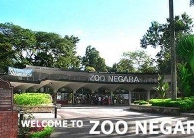 أسعار ورسوم دخول حديقة الحيوانات