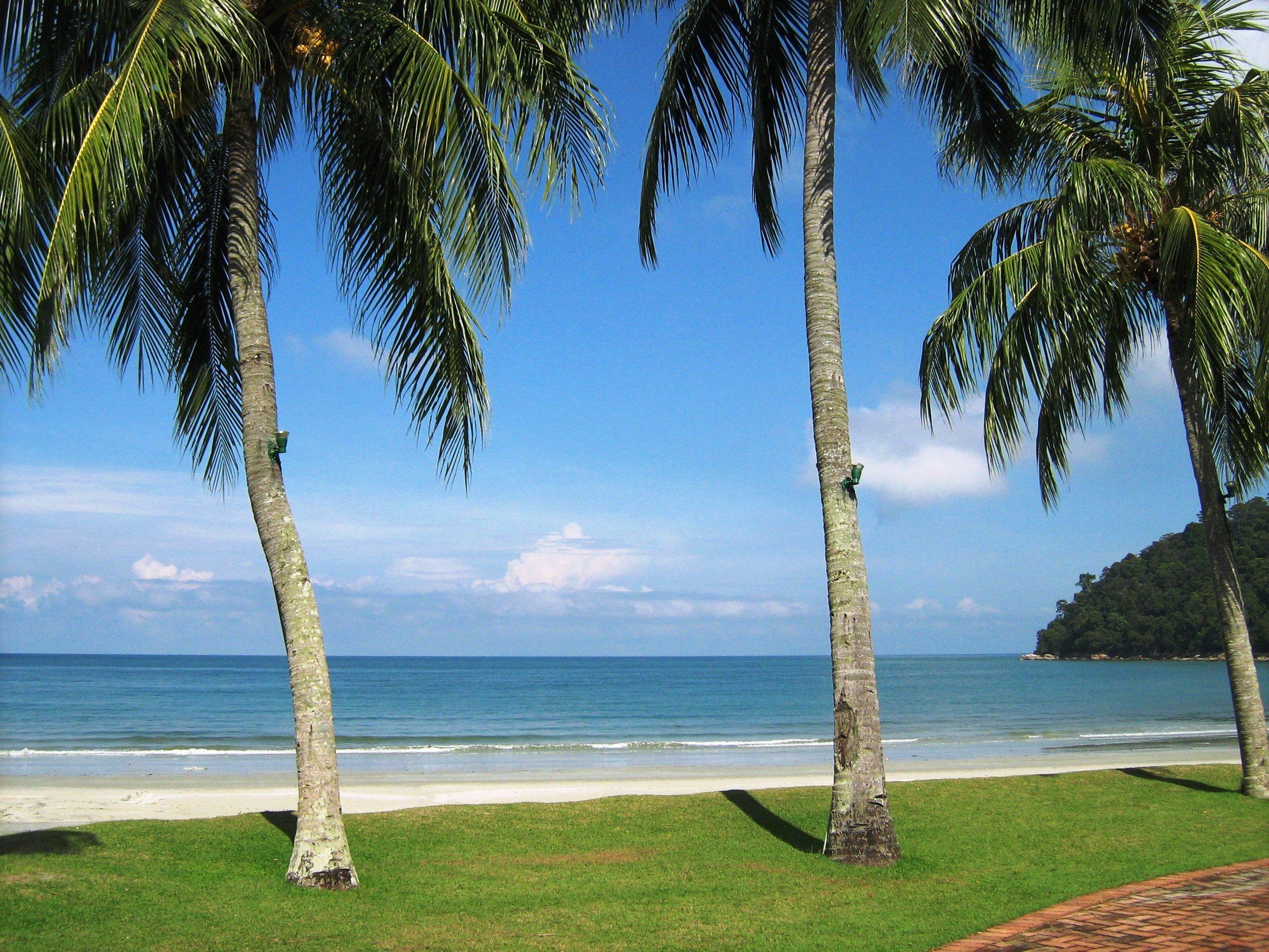 جزيرة بانكور في ماليزيا