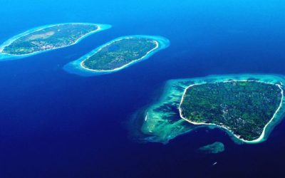 A tour of the Jelly Islands in Indonesia