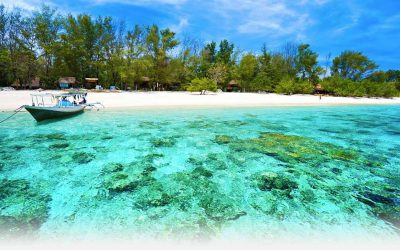 Reasons to visit Indonesia