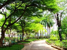 حديقة بنجاسيرى