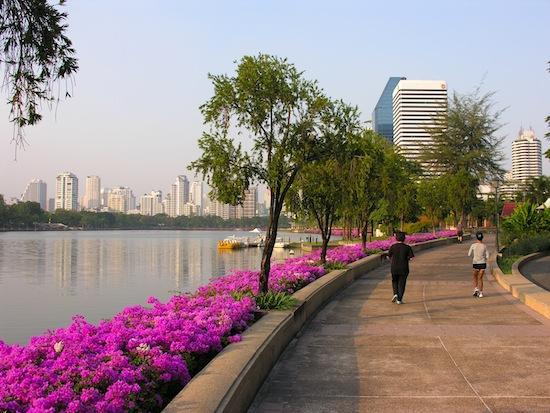 حديقة بينجاكيتي تايلاند