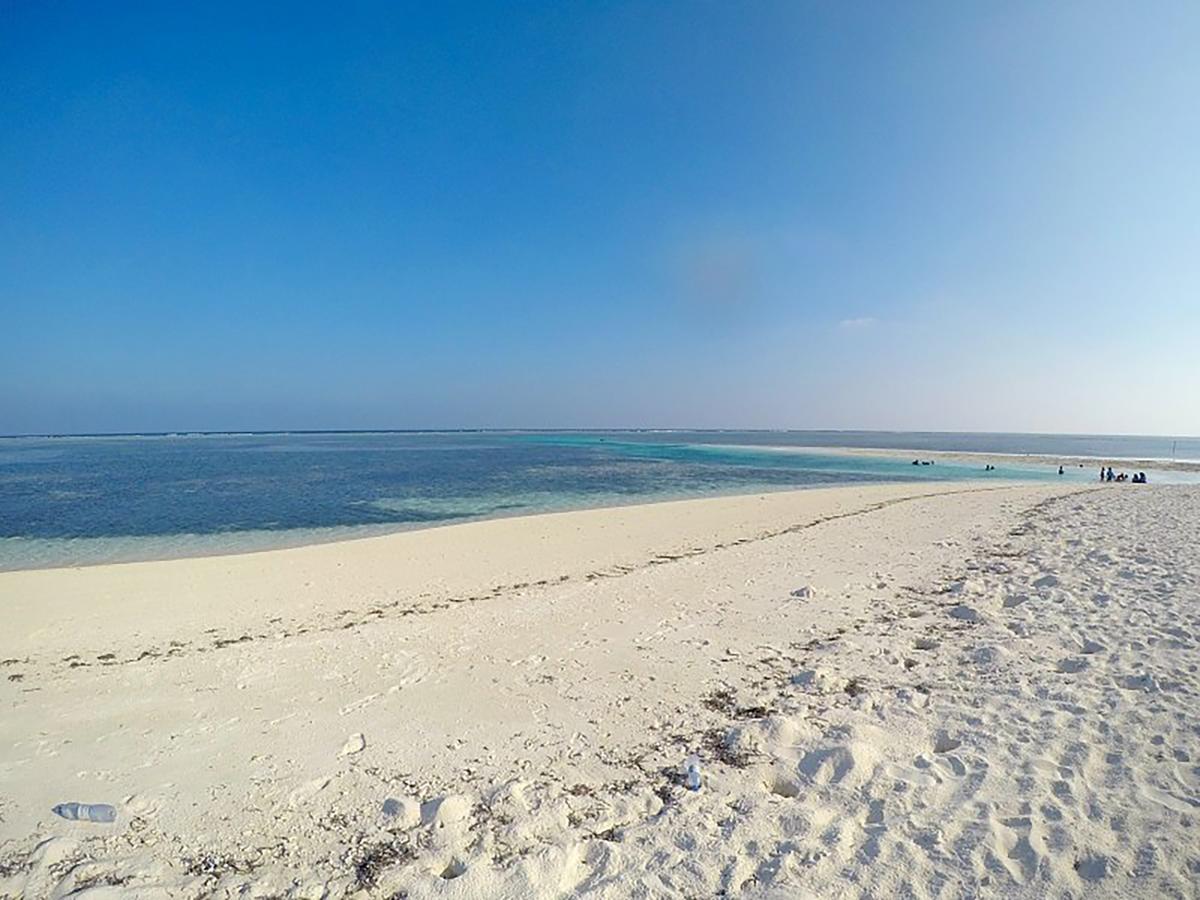فيلانا بيتش المالديف