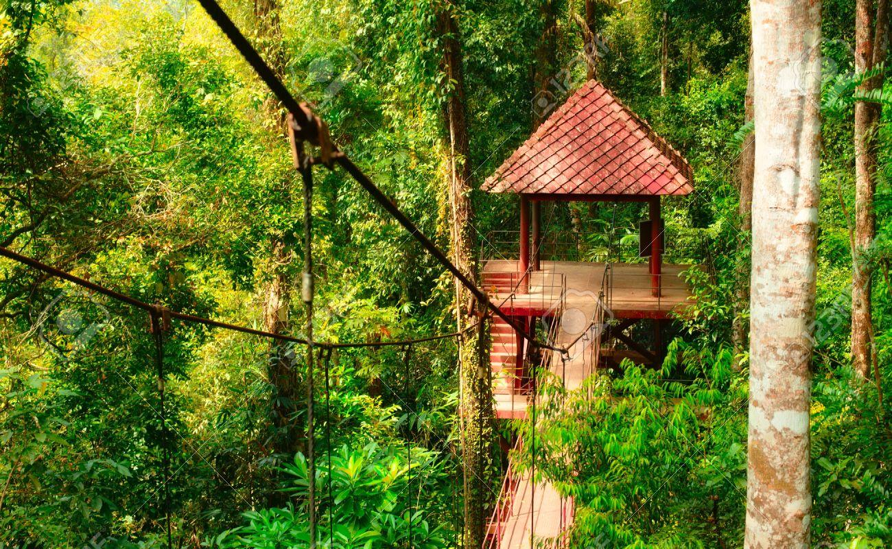 اجمل الحدائق الشهيره فى تايلاند
