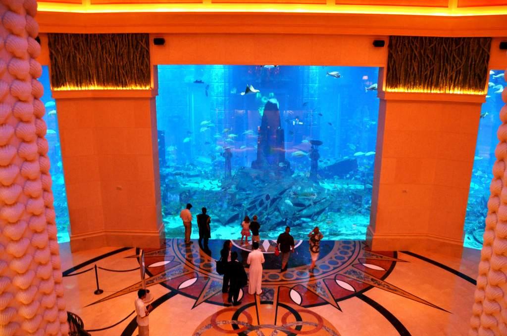 فعالیت در اتاق های خالی Atlantis Hotel دبی