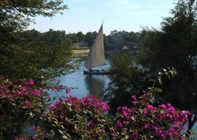 5 اماكن لابد من زيارتهم فى اسوان | أفضل الاماكن السياحية فى اسوان