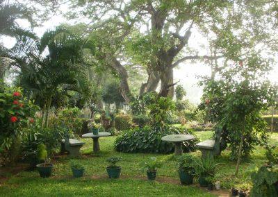 مدينة أنورادابورا المقدسة