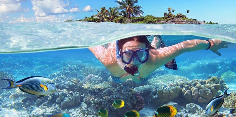 إستكشف عالم البحار في المالديف