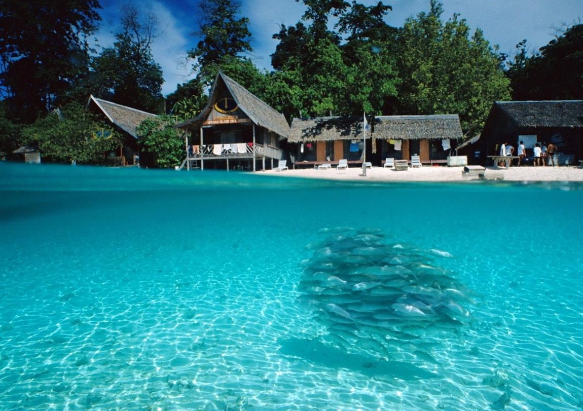 السياحة و الغوص في جزيرة توجيان