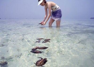 اهم الانشطه السياحيه في جزر الالف في جاكرتا