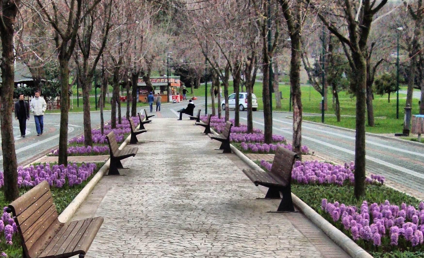 أنشطة في الحديقة الثقافية في بورصة تركيا