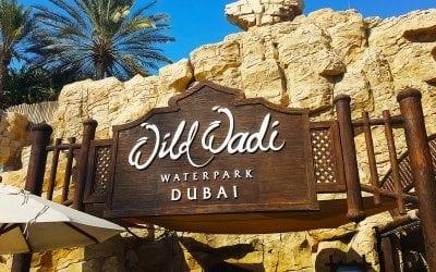 الوايلد وادي للالعاب المائية في دبي