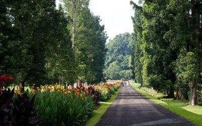 حدائق بوقور النباتية