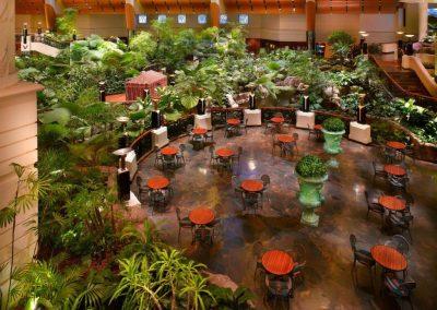 جراند حياة دبي Grand Hyatt Dubai