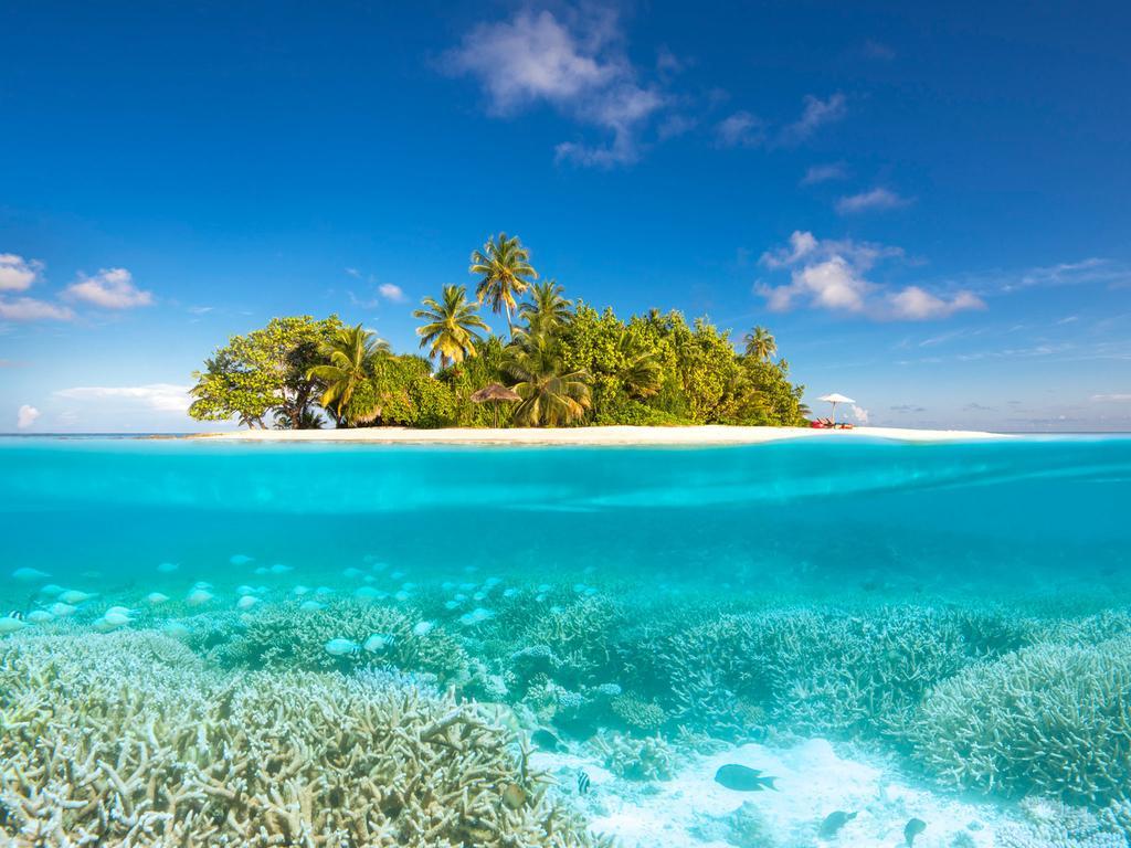 أفضل 5 خيارات لقضاء شهر العسل في المالديف