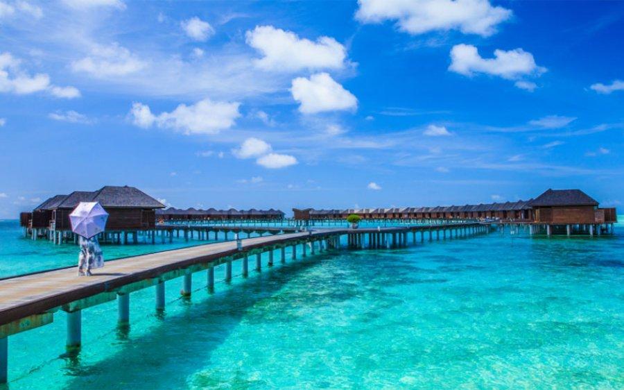 أفضل المنتجعات في جزر المالديف للمتعه و للغوص | افضل منتجعات المالديف