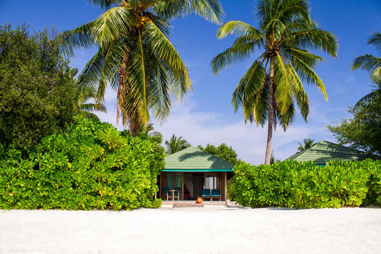 منتجع كاناريف المالديف