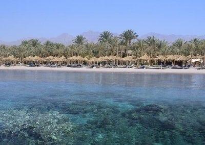 هيلتون الفيروز شرم الشيخ Hilton Sharm El Sheikh Fayrouz Resort