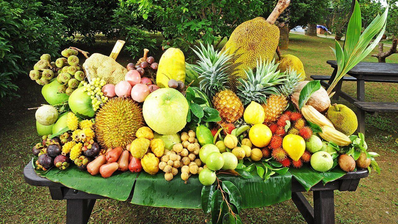 أفضل أنشطة في حديقة الفواكه في بينانج ماليزيا