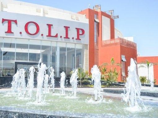 فندق تولب النرجس Tulips Hotel Nargis