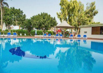 فندق هوليداي انترناشيونال Hotel Holiday International