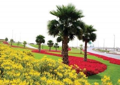 اهم الانشطه في حديقة مشرف في دبي