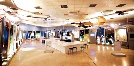 أنشطة في متحف المحطة الشارقة الامارات