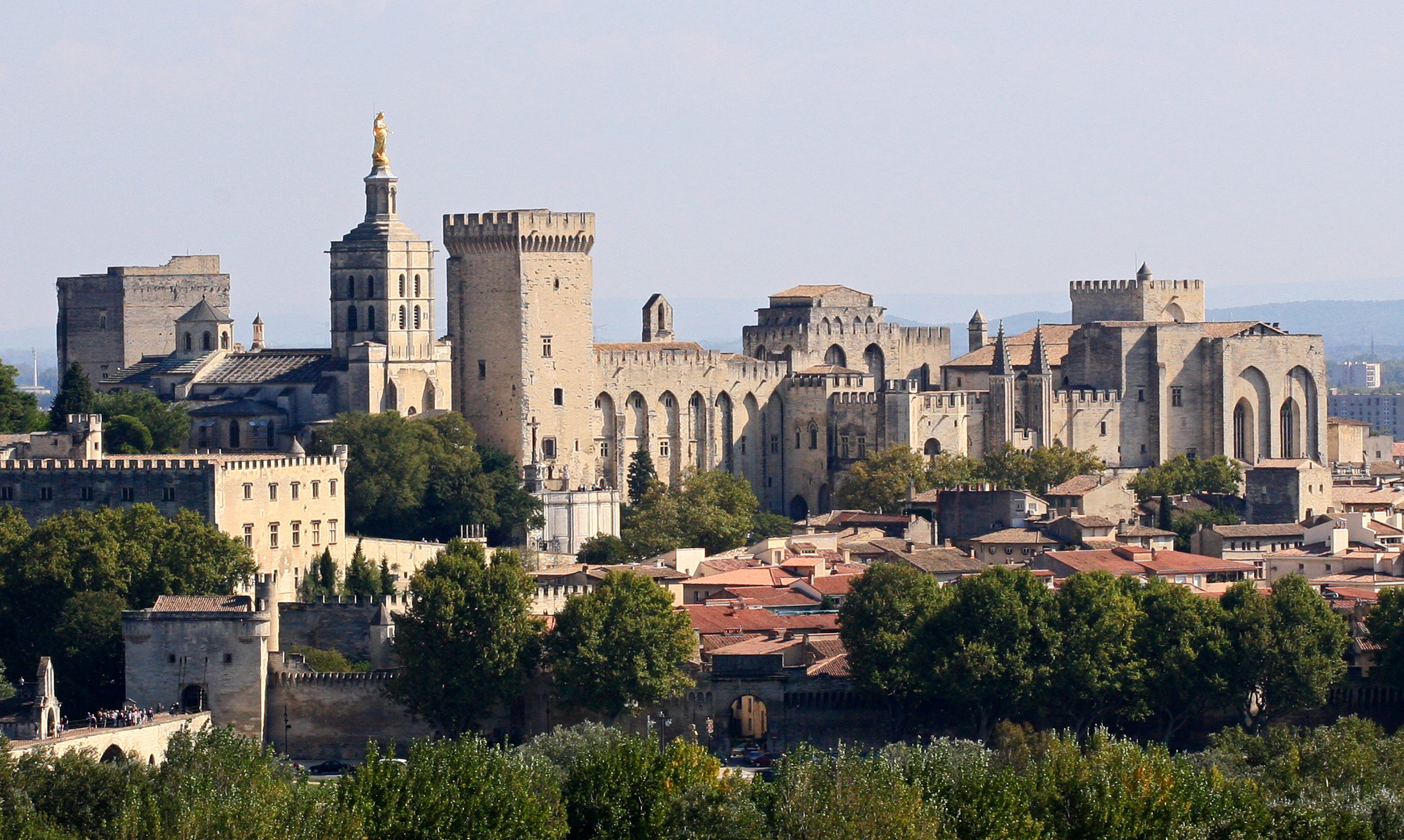 قصر الباباوات في فرنسا