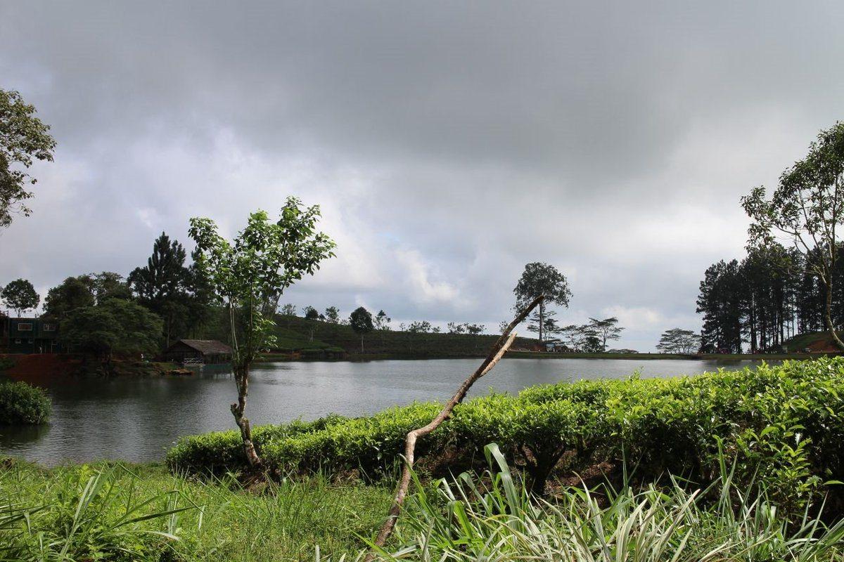 بحيرة جريجوري نوراليا
