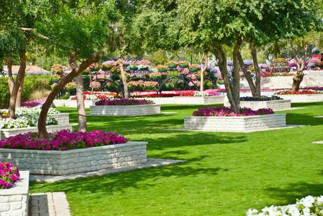 أنشطة داخل حديقة العين براديس الامارات
