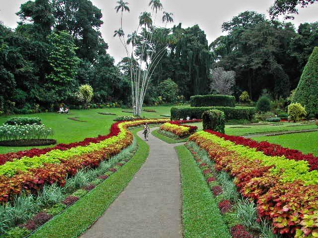 Haagala Garden Garden