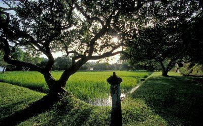 Taman Alam Lunuganga Sri Lanka