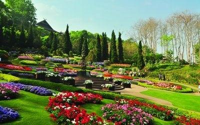 حديقة دوى تونغ